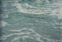 2003-2004 les mers et les poissons