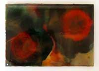 abstraction fleur 10